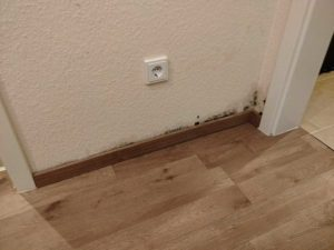 Wasserschadensanierung-Vorher-1-Trockenmeister.de